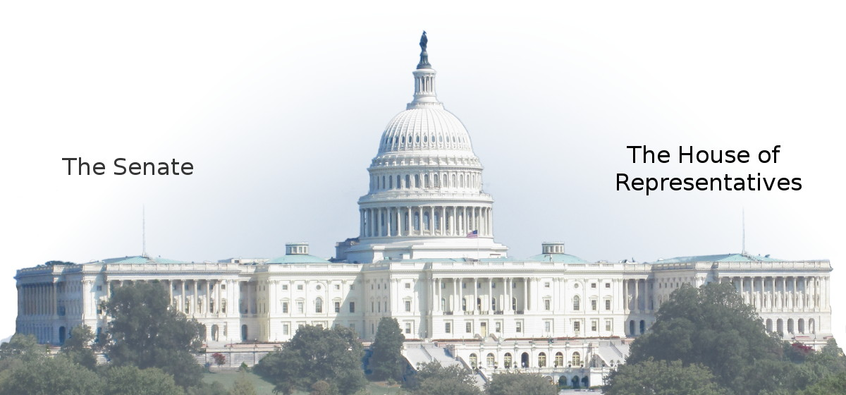 as your state s representative in congress which side of the regulation debate would get your vote w The senate will convene on november 20, 2018, for the organization session.